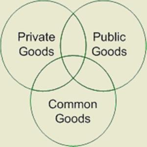 Commons Trust diagram